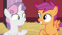 Sweetie Belle and Scootaloo excited S8E10