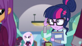Twilight Sparkle apologizes to purple-haired girl EG3.png