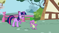 Twilight and Spike follow Snips and Snails S1E06.png