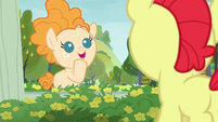 Young Pear Butter -I like that name- S7E13