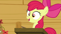 Apple Bloom --The first post-cutie mark meetin'-- S6E4