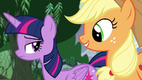 Applejack walks next to Twilight S4E25
