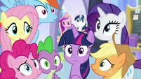 Cadance and Shining appear behind ponies S9E25