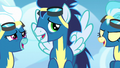 Fleetfoot, Soarin, and Misty Fly laughing S6E7.png