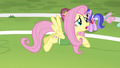 Fluttershy guiding butterflies off the field S6E18.png