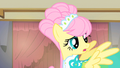 Fluttershy no why! S1E20.png