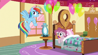 Rainbow Dash --on second thought-- S6E15
