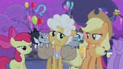 S04E14 Applejack i Apple Bloom patrzą na Goldie Delicious