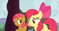 Babs and Apple Bloom running around a tree S3E8.png
