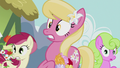 Flower ponies in shock S5E9.png