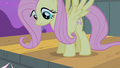 Fluttershy on the stage S4E14.png