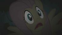 Fluttershy scared S01E02