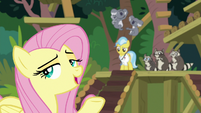 "Pegasus Angel ""I want to marry Discord"" S9E18"