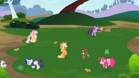 Rainbow Dash's friends playing with their pets S2E07