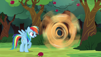 Rainbow Dash appears and interrupts Applejack S6E18