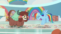 Rainbow Dash jumping up and down S9E7