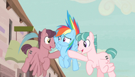 Red and pink stallions pull Rainbow to the ground S5E1