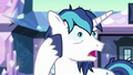 "Shining Armor ""and confusing"" S6E1.png"
