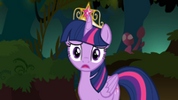 Twilight 'But the Tree of Harmony!' S4E02
