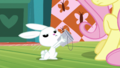 Angel showing his empty bucket to Fluttershy S5E21.png
