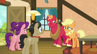 Applejack rejoins Big Mac, Filthy, and Spoiled S6E23