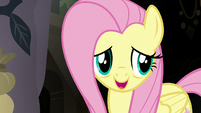 "Fluttershy ""less time to go through everything"" S7E20"