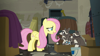 Fluttershy --I'd like you all to stay here-- S6E9