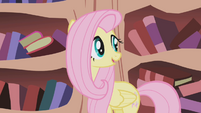 Fluttershy looks behind her S1E03