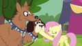 Fluttershy silences orthros S4E22.png