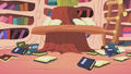 Mess of books in the library S1E02.png