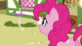 Pinkie Pie 'I bet she misses you too' S3E03.png