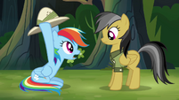 Rainbow and Daring Do -stop!- S4E04