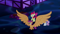 Scootaloo with giant wings S5E13