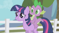 Twilight -important decisions on an empty stomach- S1E03