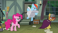 A. K. Yearling looks away as Rainbow Dash reads S7E18.png