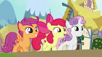 "Apple Bloom ""all sorts of animals"" S9E22"