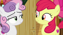 Apple Bloom and Sweetie Belle look at each other S7E21