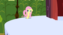 Fluttershy going on the stage S2E19