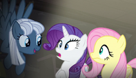 S05E01 Night Glider mówi do Rarity i Fluttershy