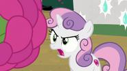 S07E06 Sweetie Belle uważa, że jej siostra jej nie zna