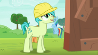 Sandbar looking at Rainbow's apple shed S8E9