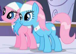 Spa ponnyer