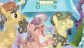 """Stubborn Crystal Pony """"Best Crystalling ever!"""" S6E2.png"""