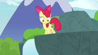 Apple Bloom looks down at Fluttershy S9E23