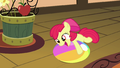 Apple Bloom playing with beach ball S4E09.png