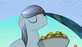 Crystal stallion sniffing fritters S3E2.png