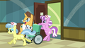 Nurse wheelchair S02E16.png