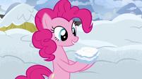 Pinkie Pie presents a snow sandwich S7E11