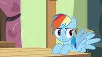 Rainbow Dash --sprinkle... something-- S6E11