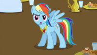 Rainbow Dash Knows What's Up 3 S3E10